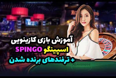 آموزش بازی اسپینگو Spingo در بهترین سایت شرط بندی